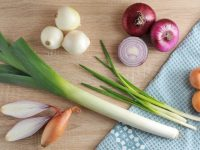 付け合わせに最適な西洋野菜 エシャロット・パールオニオン・ホースラディッシュ・ルバーブ・エシャレット【野菜と果物ガイド】