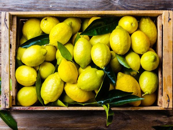 風邪予防や疲労回復に! レモンとライムの保存法・栄養【野菜と果物ガイド】