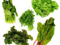 栄養が豊富な青菜! ツルムラサキ・モロヘイヤ・アシタバ・プチヴェール・芽キャベツ【野菜ガイド】