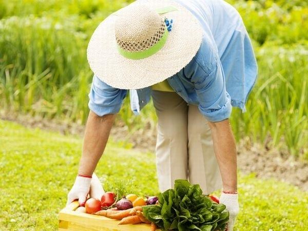身に着けるだけで快適な農作業を実現する「アシストスーツ」