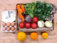 学んでおいしい!二十四節気に合わせて八百屋から届く「野菜セット」