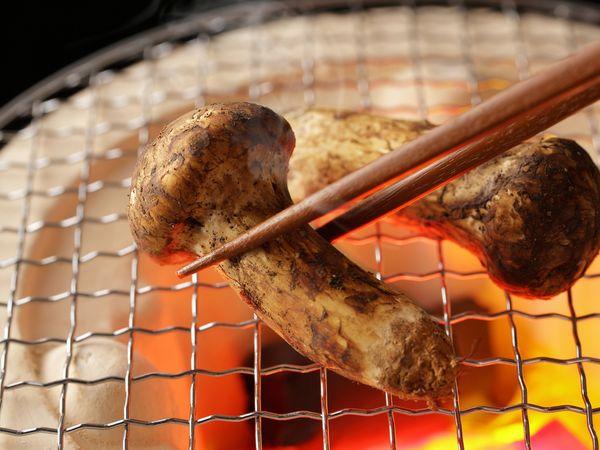 松茸ご飯や土瓶蒸しに! 産地で味や香りが違う? 保存法&料理のポイント【野菜ガイド】