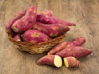 胃腸も心も元気にする サツマイモの薬膳効果とレシピ【健康をめざす家庭の薬膳】