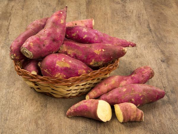 【健康をめざす家庭の薬膳】胃腸を元気にするサツマイモの薬膳効果とレシピ