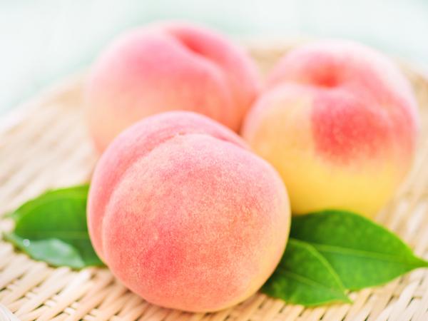 【47都道府県の地域食材】モモや柿に地鶏!福島県の特産品と農作物