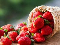 とちおとめにスカイベリー! 栃木県が誇るイチゴやとちぎ和牛などの特産品【47都道府県の地域食材】