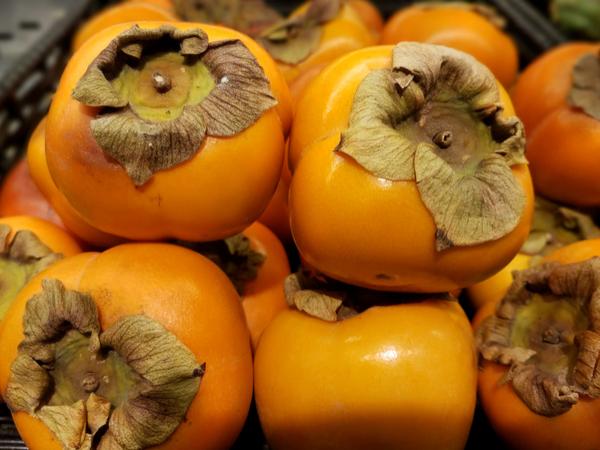 【47都道府県の地域食材】オンリーワンの食材を目指す 岐阜県の名産品