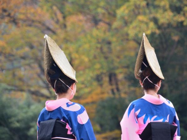 【47都道府県の地域食材】和三盆もなると金時も!おいしい徳島県の特産品