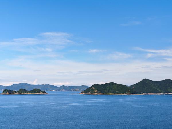【47都道府県の地域食材】愛媛県はミカンだけじゃない! 温暖な気候で育つ愛のある特産品