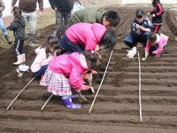 親子の食農共育体験 地域に広がる連携の輪
