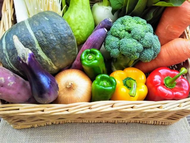 野菜と果物ガイド