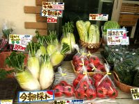 朝採れ野菜を2時間で店頭へ 家族6人で営む八百屋「大野菜」