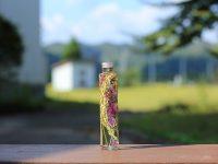 地域色あふれる「稲穂・ダリアのハーバリウム」が話題 秋田県の農福連携