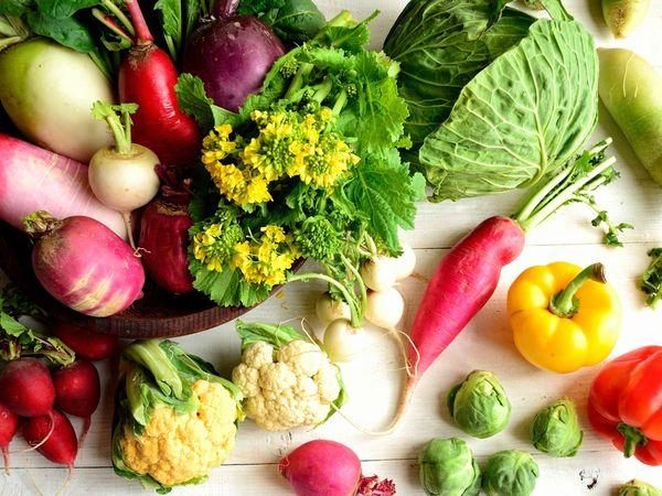 春キャベツ・新タマネギ・菜の花 春野菜でもう1品!管理栄養士の簡単【野菜レシピ】