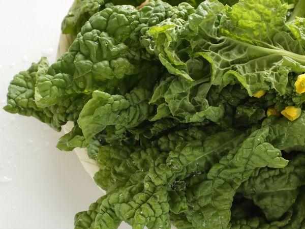 春を告げる野菜「菜の花」の保存法・栄養・料理のポイント【野菜と果物ガイド】
