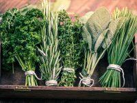 バジル・ローズマリー・タイム ハーブの種類別おすすめ料理【野菜と果物ガイド】