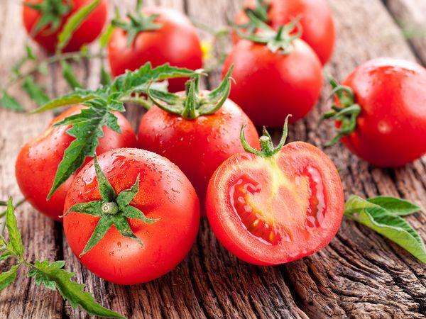 トマトの旬と時期