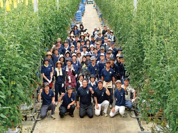 農業の新しいカタチを創る~農業法人「サラダボウル」が人材を募集【PR】