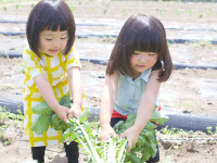 どえりゃあ人気の農業公園 名古屋市農業センター「delaふぁーむ」へ行こみゃあ