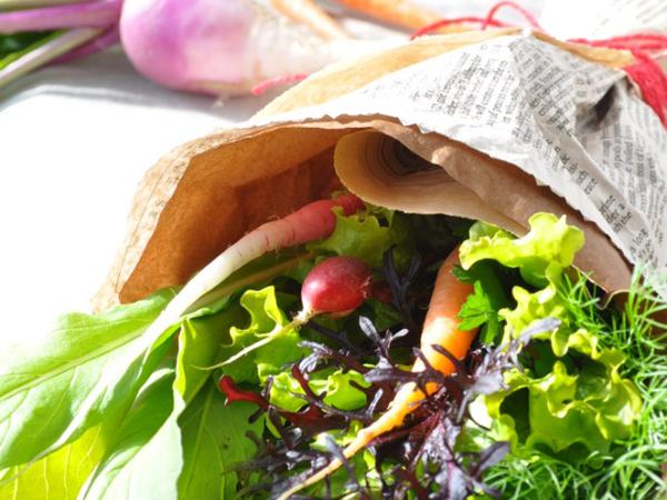200種類の西洋野菜を無農薬栽培!土磨自然農園の野菜が選ばれる理由