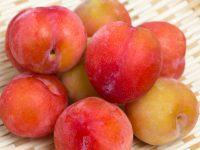 甘くて爽やか おいしいスモモの見分け方・栄養・保存法【果物ガイド】