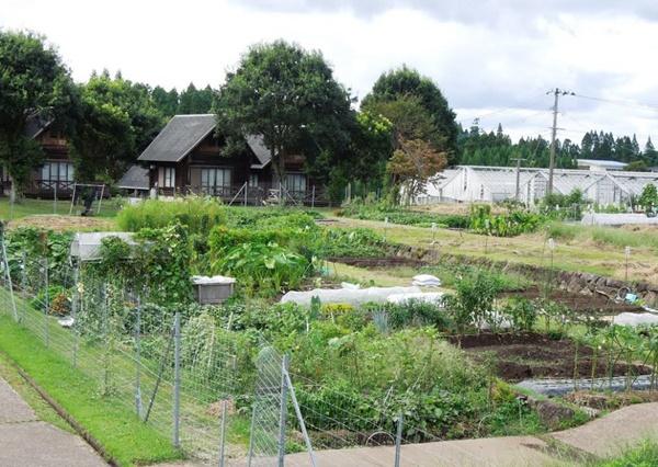 滞在型市民農園