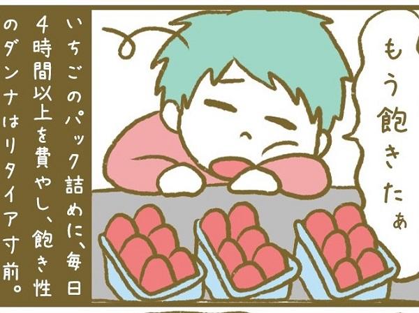 漫画「宮崎に移住した農家の嫁日記」【第7話】いちごパック詰め大作戦
