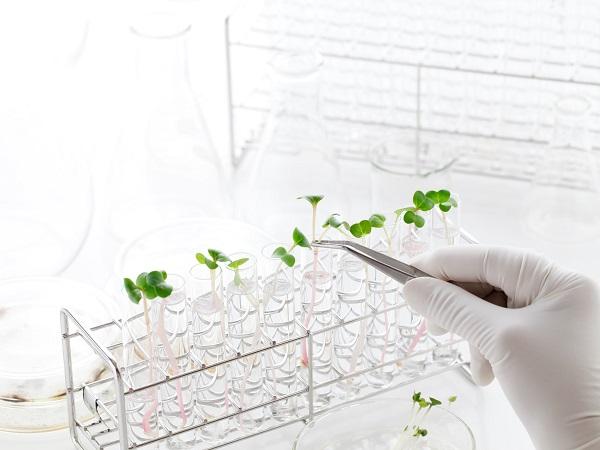 ワンランク上の農業へ!役立つ資格の取り方、使い方 ~バイオ技術者認定試験~