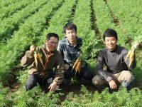 家族以外への事業継承のカタチ-若手農家3人が受け継いだ農業法人の場合