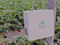 どこにいても栽培環境が分かる 次世代モニタリングサービス