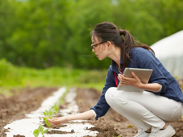 スマート農業の未来とこれからの課題とは