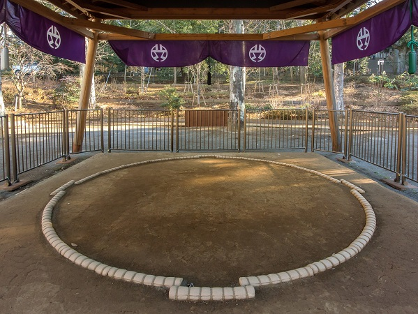 相撲の四股は豊作祈願? 意外な相撲の起源とは