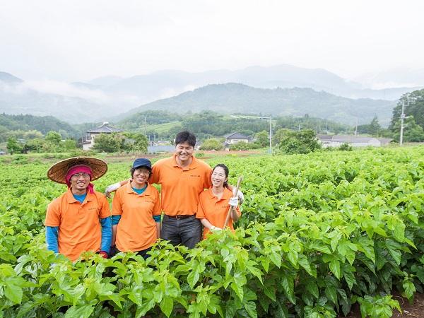 10万本の桑で、過疎集落を再生する!韓国人青年の熱き志