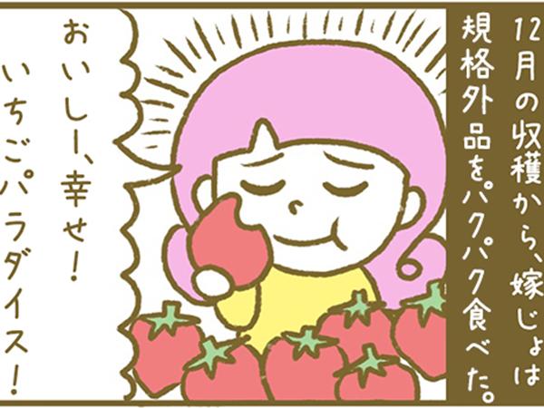 漫画「宮崎に移住した農家の嫁日記」【第11話】嫁じょ、いちご拒否反応