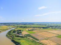 農地バンクとは? 利用のメリットは?地域農業の活性化になる?