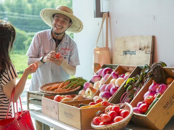 「野菜のセレクトショップ」yaotomiに学ぶ、本当に届けたい野菜とは