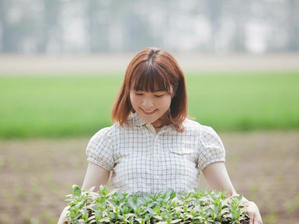 緑肥とは?緑肥作物の種類と有効な使い方