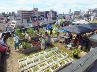 都市を耕す アーバンファーマーズの小倉崇さんが描く東京の未来