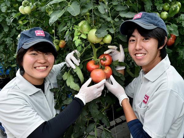 """平均年齢29歳の""""若さ""""が農業を変える! ~イオングループが取り組む「次世代につなげる農業」"""