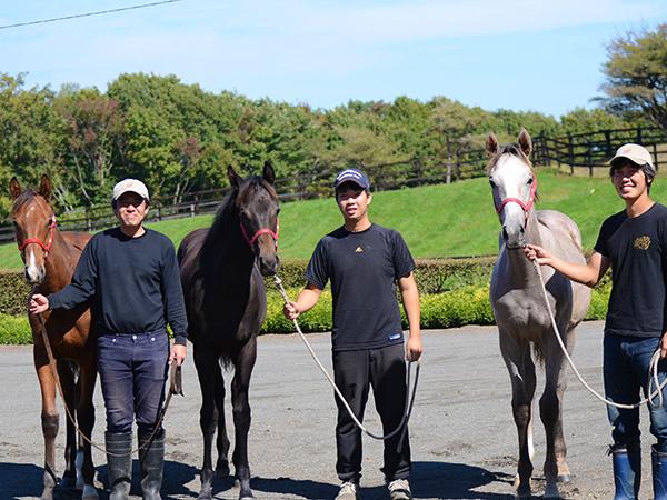 育てた馬が「ダービー馬」になる夢も! 北海道・日高のサラブレッド牧場でスタッフ募集中