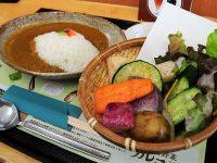 カラフル&大盛り!鎌倉野菜カレーで伝える、農家の思いとは