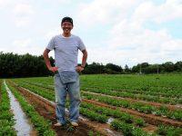 国産落花生の未来を救う、「商人」が挑む農業