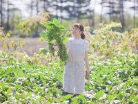 農業に不可欠な窒素肥料の効果と働き