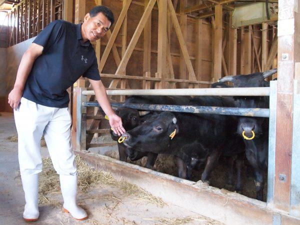 """国産飼料100%実現 日本一""""健康でおいしい""""和牛一貫生産「和農産」"""