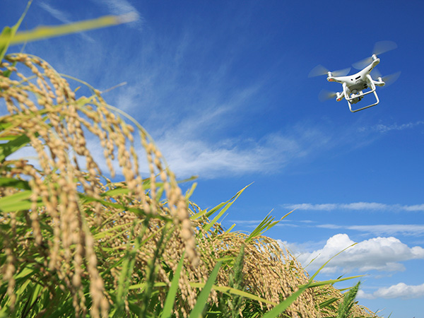 農薬散布で活躍中の農業用ドローンの可能性とは