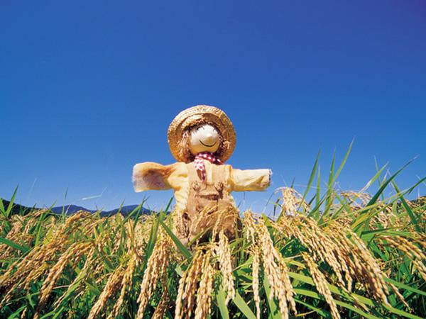 農業経営基盤強化準備金制度