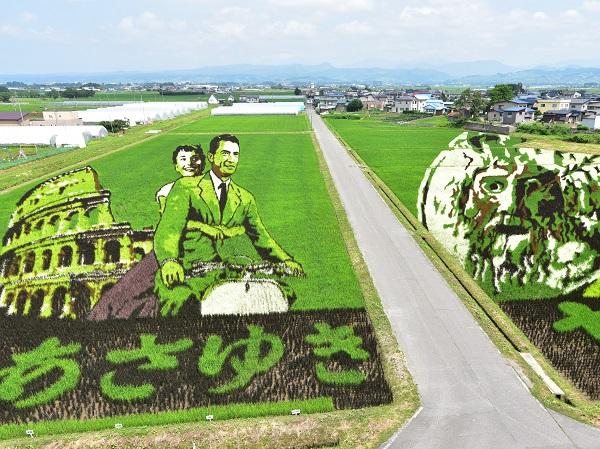 見ごろ真っ盛り!「田んぼアート」のクオリティが凄まじい