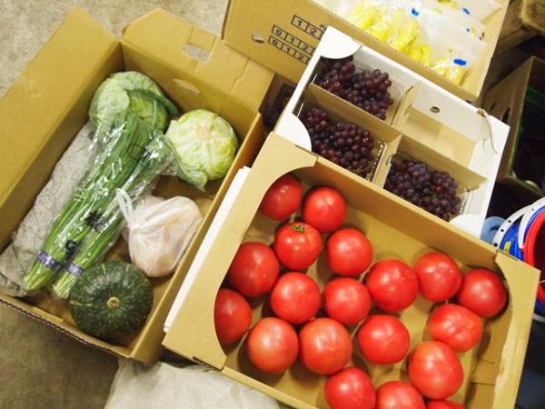 野毛山動物園のエサ用野菜と果物