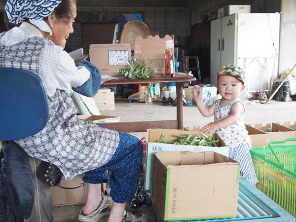 「儲かる農業」~バズる「農業写真」で発信力強化!野菜や果物の撮り方のコツ~