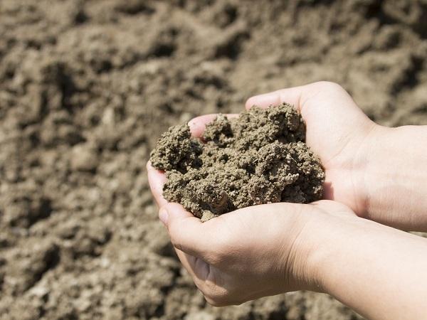 """「儲かる農業」~農地を見極め「適地適作」! """"土壌""""と""""土性""""を活かす農作物の選び方~"""